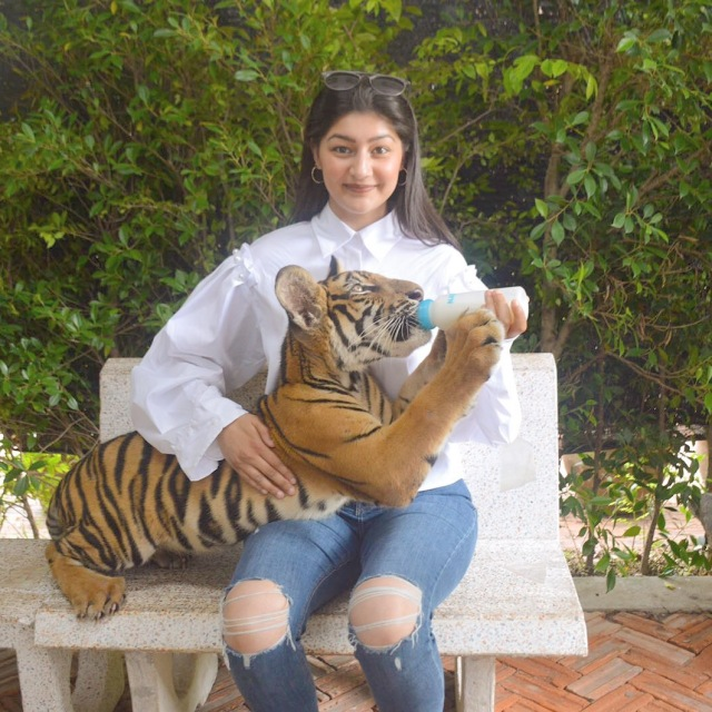 tiger sana